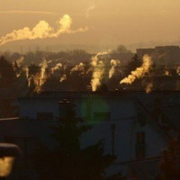 Apel do ministra: to inicjatywa Greenpeace