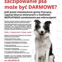 Zaczipuj bezpłatnie psa